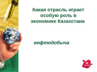 Какая отрасль играет особую роль в экономике Казахстана нефтедобыча