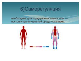 необходима для поддержания гомеостаза — постоянства внутренней среды организм