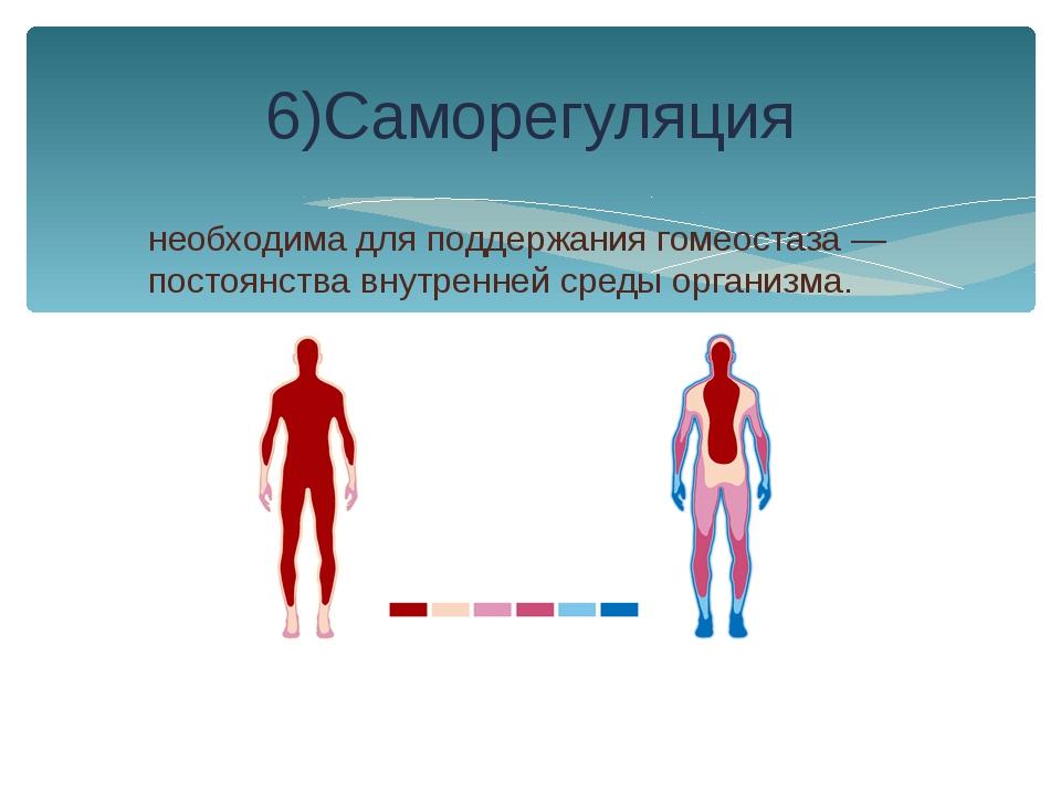 необходима для поддержания гомеостаза — постоянства внутренней среды организм...