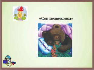 «Сон медвежонка»
