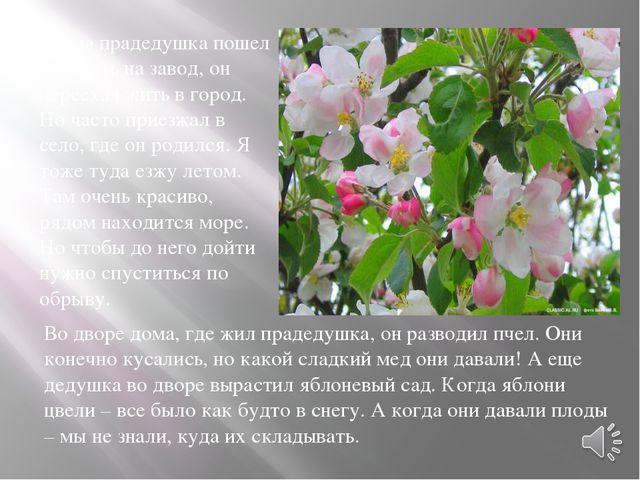 Мой прадедушка уже умер. Похоронен он на Николаевском кладбище на аллее почет...