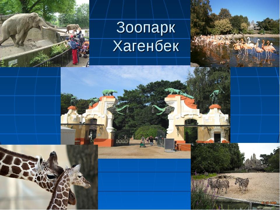 Зоопарк Хагенбек