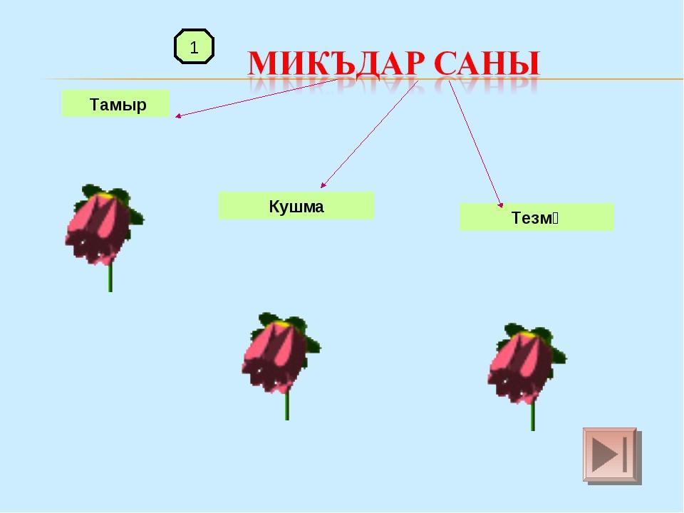 Тамыр Кушма Тезмә 1