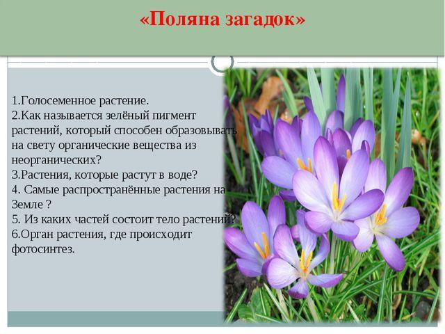 1.Голосеменное растение. 2.Как называется зелёный пигмент растений, который с...