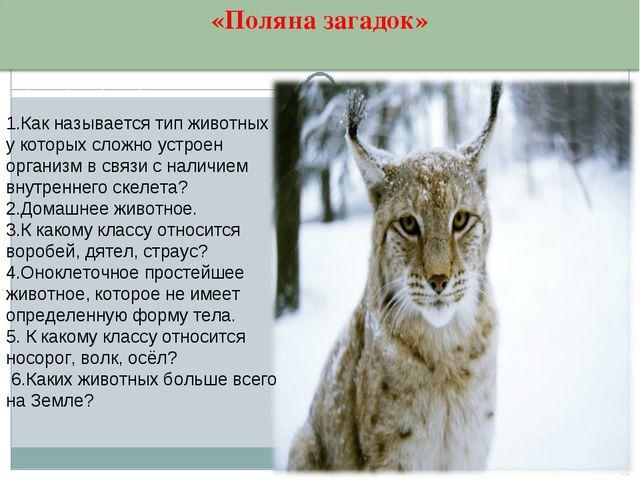 1.Как называется тип животных у которых сложно устроен организм в связи с нал...