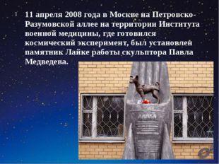 11 апреля 2008 года в Москве на Петровско-Разумовской аллее на территории Инс