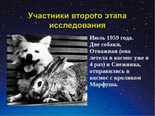 Июль 1959 года. Две собаки, Отважная (она летела в космос уже в 4 раз) и Снеж