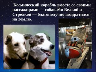 Космический корабль вместе со своими пассажирами — собаками Белкой и Стрелко