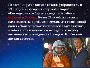Последний раз в космос собаки отправились в 1966 году. 22 февраля стартовал к