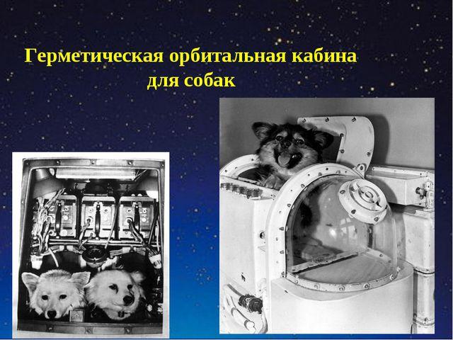 Герметическая орбитальная кабина для собак