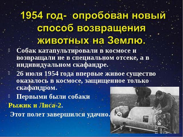Собак катапультировали в космосе и возвращали не в специальном отсеке, а в ин...