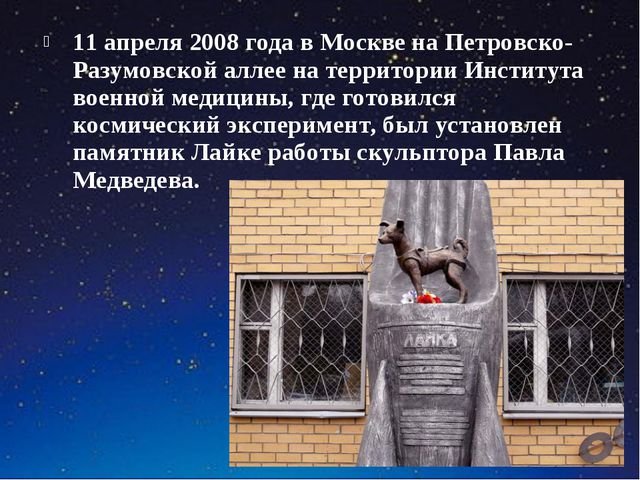 11 апреля 2008 года в Москве на Петровско-Разумовской аллее на территории Инс...