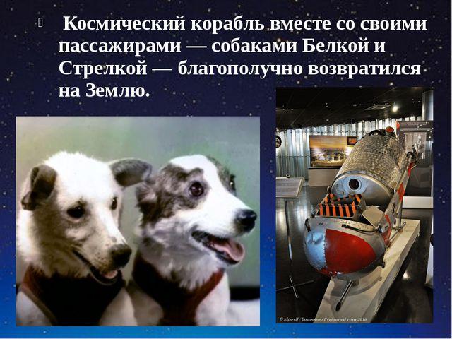 Космический корабль вместе со своими пассажирами — собаками Белкой и Стрелко...