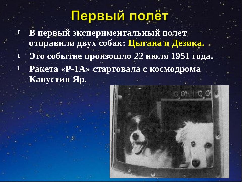 В первый экспериментальный полет отправили двух собак: Цыгана и Дезика. Это с...