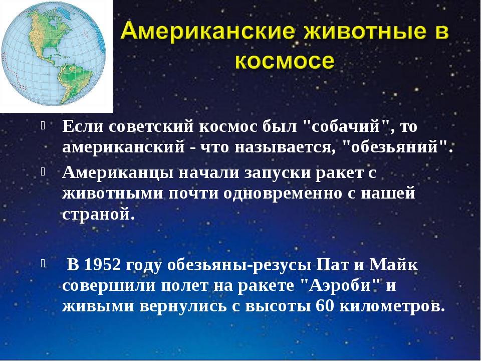 """Если советский космос был """"собачий"""", то американский - что называется, """"обезь..."""