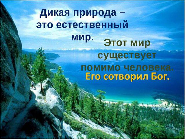 Дикая природа – это естественный мир. Этот мир существует помимо человека.