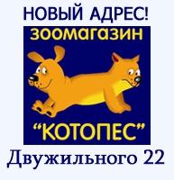 hello_html_5e24c138.jpg