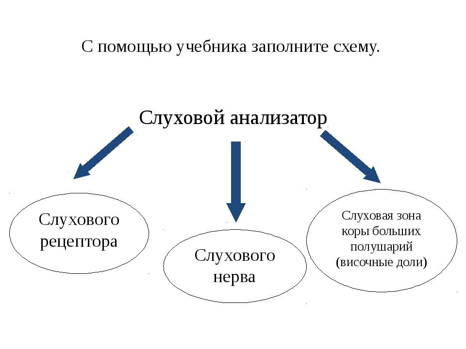 С помощью учебника заполните схему. Слуховой анализатор Слухового рецептора С...