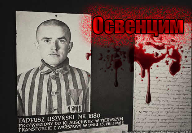 Auschwitz tadeush uzhinsky