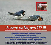 hello_html_m7cb8e149.jpg