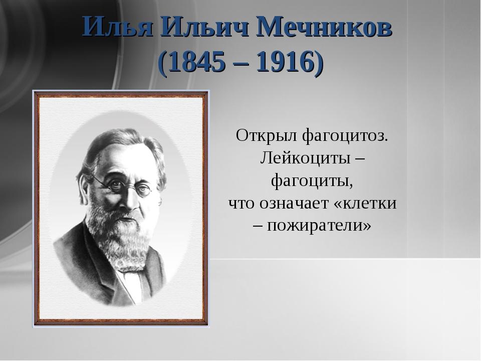 Илья Ильич Мечников (1845 – 1916) Открыл фагоцитоз. Лейкоциты – фагоциты, что...