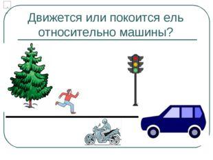 Движется или покоится ель относительно машины?