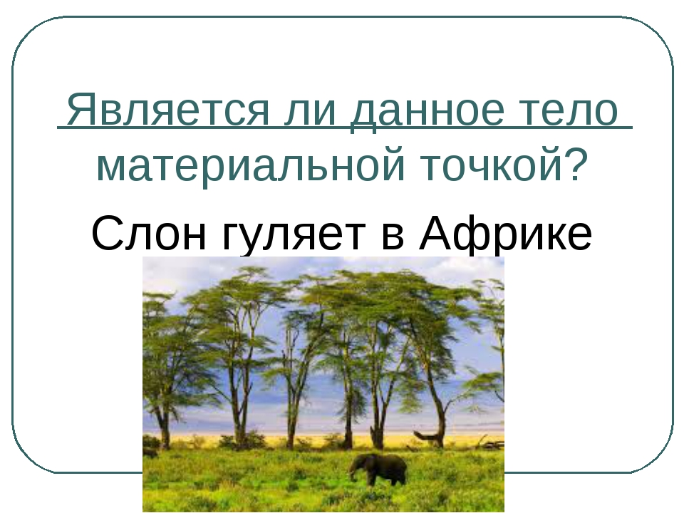 Является ли данное тело материальной точкой? Слон гуляет в Африке