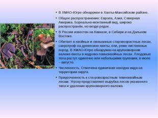 В ХМАО-Югре обнаружен в Ханты-Мансийском районе. Общее распространение: Европ