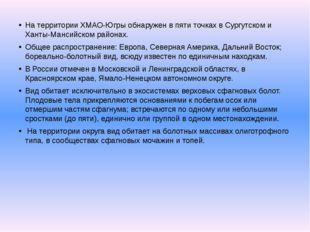 На территории ХМАО-Югры обнаружен в пяти точках в Сургутском и Ханты-Мансийск