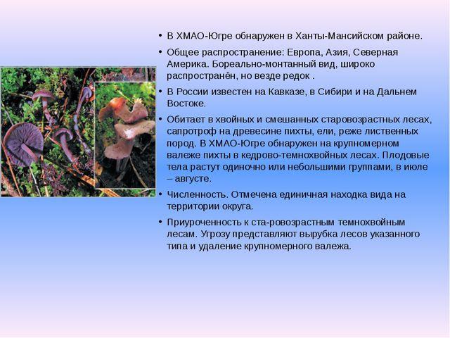 В ХМАО-Югре обнаружен в Ханты-Мансийском районе. Общее распространение: Европ...