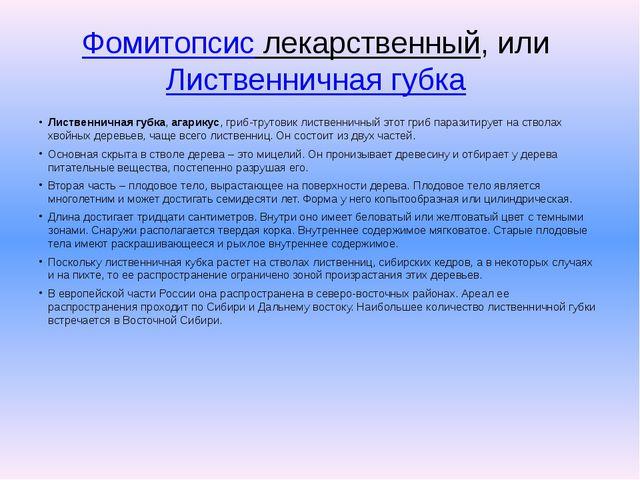Фомитопсис лекарственный, илиЛиственничная губка Лиственничная губка,агари...