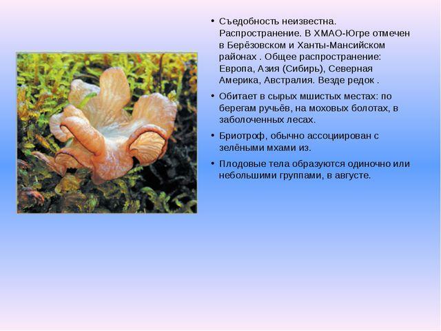 Съедобность неизвестна. Распространение. В ХМАО-Югре отмечен в Берёзовском и...