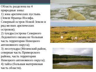 Область разделена на 4 природные зоны: 1) зона арктических пустынь (Земля Фр