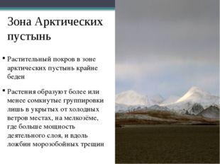 Зона Арктических пустынь Растительный покров в зоне арктических пустынь крайн