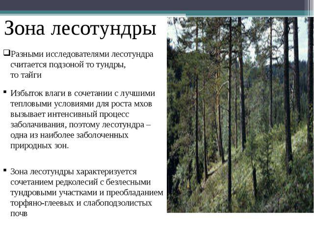 Зона лесотундры Избыток влаги в сочетании с лучшими тепловыми условиями для р...