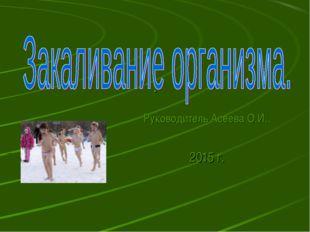 . Руководитель Асеева О.И.. 2015 г.