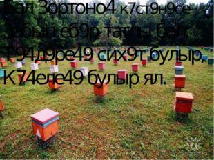 Бал 3ортоно4 к7ст9н9се- 3абып еб9р татлы бал, Т94д9ре49 сих9т булыр, К74еле49