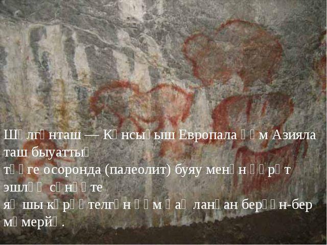 Шүлгәнташ — Көнсығыш Европала һәм Азияла таш быуаттың тәүге осоронда (палеоли...