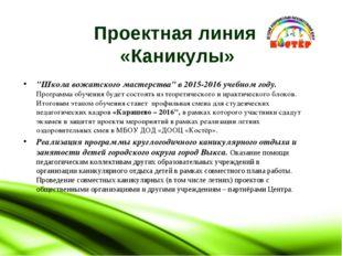 """Проектная линия «Каникулы» """"Школа вожатского мастерства"""" в 2015-2016 учебном"""