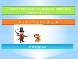 Угадайте слово с удвоенным согласным, связанное с обучением животных. р и с а