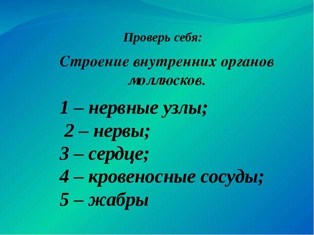 Строение внутренних органов моллюсков. Проверь себя: 1 – нервные узлы; 2 – не...