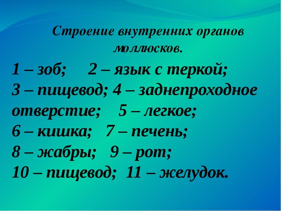 1 – зоб; 2 – язык с теркой; 3 – пищевод; 4 – заднепроходное отверстие; 5 – ле...