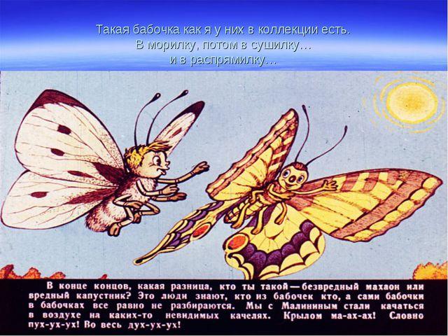 Такая бабочка как я у них в коллекции есть. В морилку, потом в сушилку… и в р...