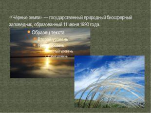 «Чёрные земли» — государственный природный биосферный заповедник, образованны