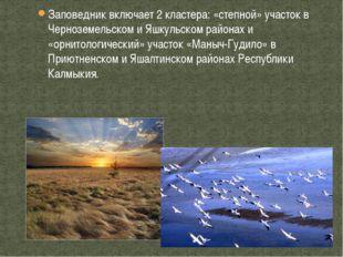 Заповедник включает 2 кластера: «степной» участок в Черноземельском и Яшкульс