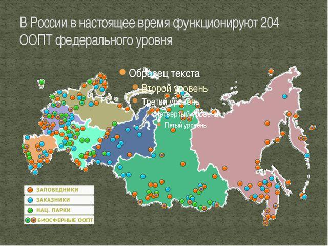 В России в настоящее время функционируют 204 ООПТ федерального уровня