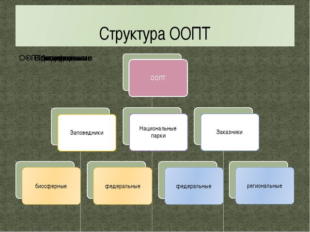 Структура ООПТ