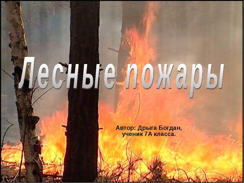 Автор: Дрыга Богдан, ученик 7А класса.