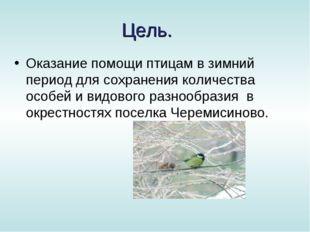 Цель. Оказание помощи птицам в зимний период для сохранения количества особей