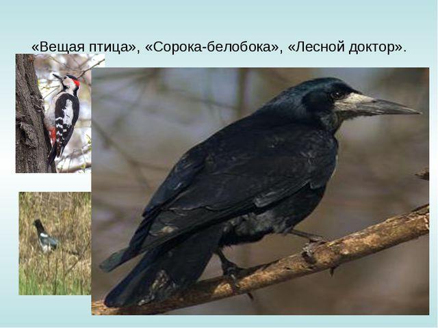 «Вещая птица», «Сорока-белобока», «Лесной доктор».
